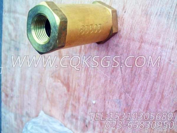 185505单向阀,用于康明斯NTA855-G2(M)60Hz发动机燃油进回油管路组,【船舶用】配件-0
