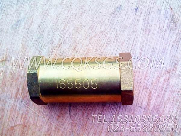 185505单向阀,用于康明斯NTA855-C310发动机燃油管路组,【出口台湾轨道车】配件-0