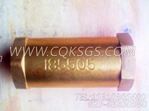 185505单向阀,用于康明斯NTA855-C310发动机燃油管路组,【出口台湾轨道车】配件-2