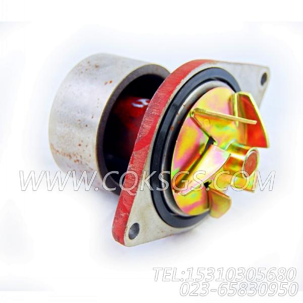【柴油机C260 20的水泵组】 康明斯水泵,参数及图片-0