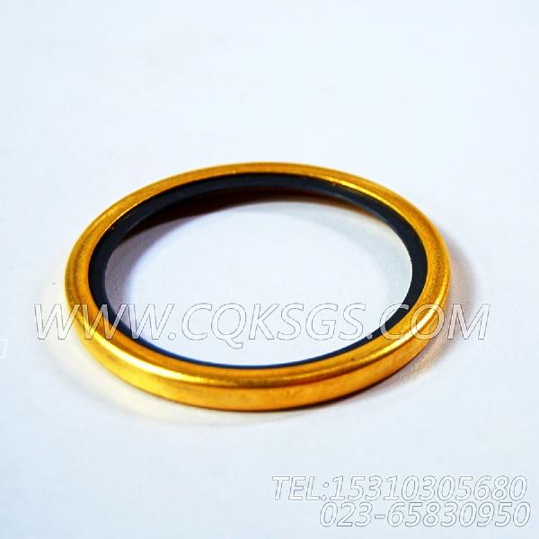 186780节温器密封圈,用于康明斯KTA19-C450发动机节温器.壳.支架总成组,【钻机】配件-1