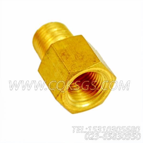 187368普通管接头,用于康明斯NTA855-G4主机性能件组,【电力】配件-1