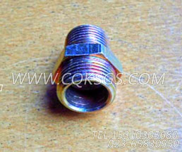 S1002A阳性管接头,用于康明斯NTA855-P360柴油机空气压缩机管路组,【泥浆泵】配件