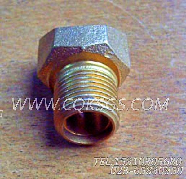 S109六角螺栓,用于康明斯KTA38-G5-880KW柴油机机油尺组,【动力电】配件-1