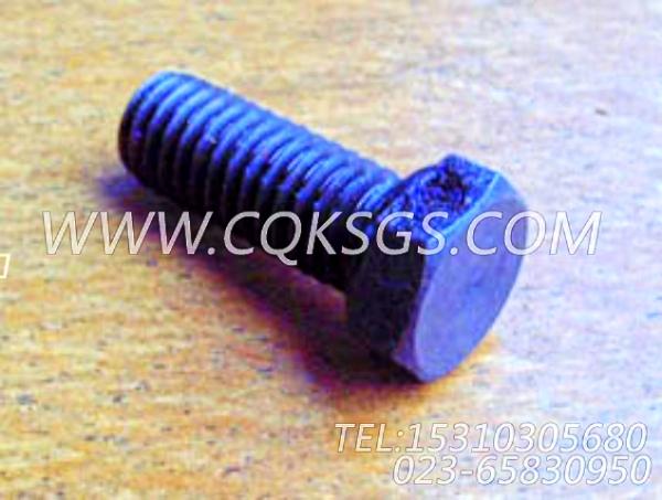S112螺栓,用于康明斯NT855-M300柴油机发电机安装组,【船用主机】配件-1