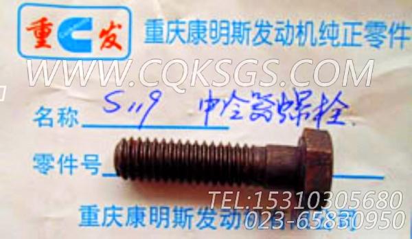 S119六角螺栓,用于康明斯M11-C310发动机空压机进水管组,【轨道车】配件