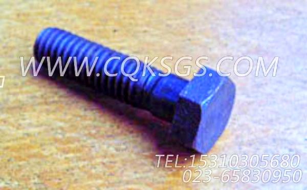 S119六角螺栓,用于康明斯M11-C310发动机空压机进水管组,【轨道车】配件-0
