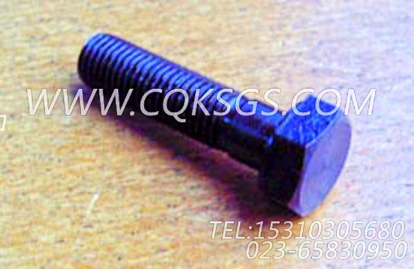 S142六角螺栓,用于康明斯NT855-C280柴油发动机机油盘组,【中置式拌和机】配件-0