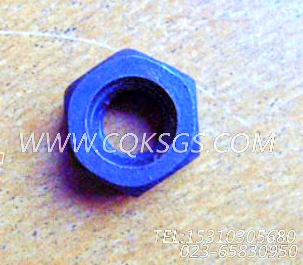 S217六角厚螺母,用于康明斯KT38-G-500KW柴油发动机风扇水箱组,【发电用】配件