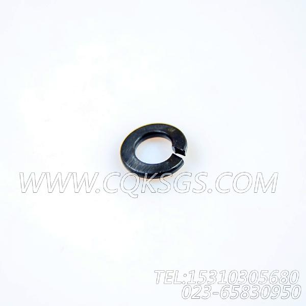 S600弹簧垫圈,用于康明斯NTA855-C335动力水室盖组,【混沙撬】配件-0