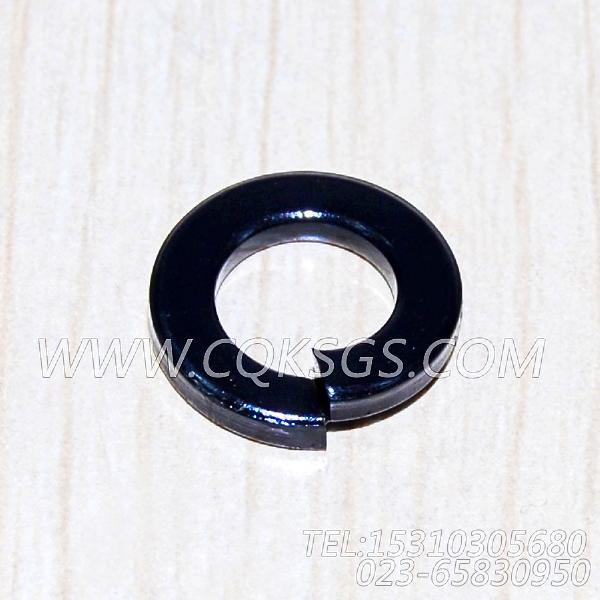 S605弹簧垫圈,用于康明斯NT855-C280动力排气管及安装组,【德工冷再生机】配件-0