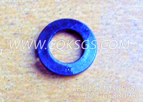 S610弹簧垫圈,用于康明斯KTA19-G2(M)发动机机油盘组,【船用】配件-0