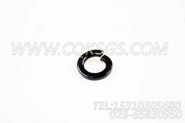 S610弹簧垫圈,用于康明斯KTA19-G2(M)发动机机油盘组,【船用】配件-2