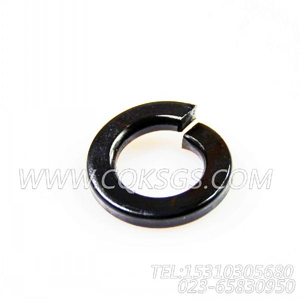 S610弹簧垫圈,用于康明斯NT855-C280动力附件驱动安装组,【拌和机】配件-0