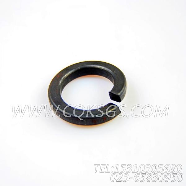 S611弹簧垫圈,用于康明斯KTA38-C1200主机基础件组,【特种车】配件-1