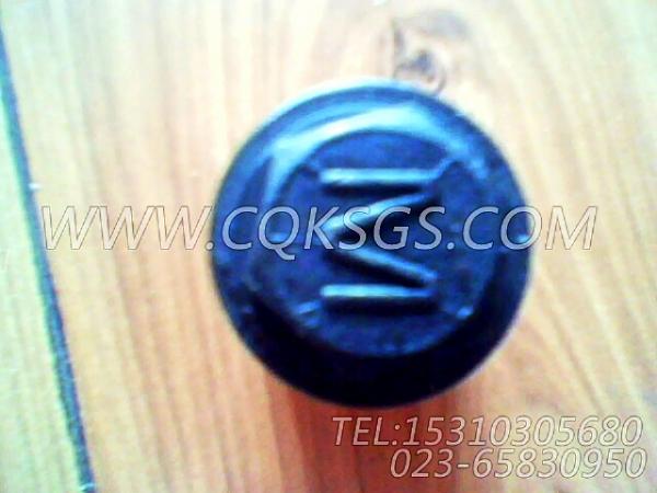 【柴油机6BTA5.9-G2的油底壳组】 康明斯螺塞,参数及图片-1