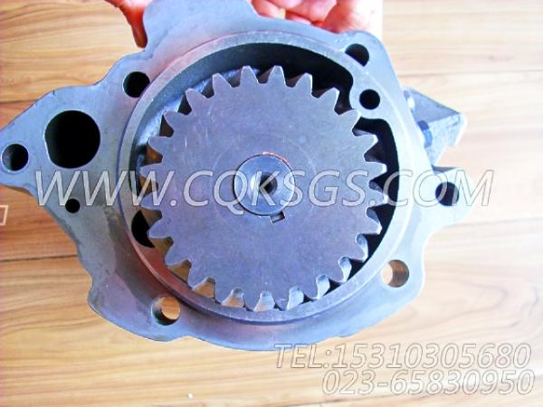 3821579机油泵,用于康明斯NTA855-G2主机机油泵组,【电力】配件