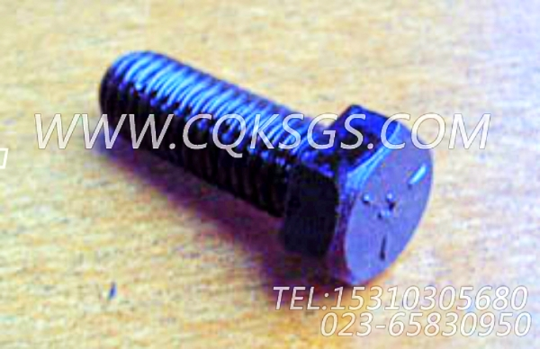 103009六角螺栓,用于康明斯NTA855-P360柴油机机油盘组,【消防泵】配件-1