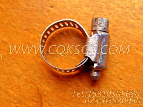 179904软管夹,用于康明斯NTA855-C360主机水滤器组,【重庆重汽牵引车】配件-2