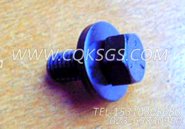 3006182带垫螺钉,用于康明斯KT19-C450主机水箱组,【宝鸡南车GC220轨道车】配件-0