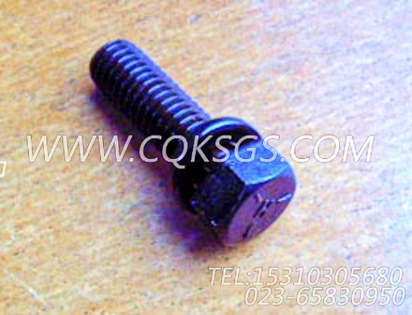 3010596带垫圈螺栓,用于康明斯NTA855-G2-CE170动力增压器安装组,【徐州重机起重机】配件-1