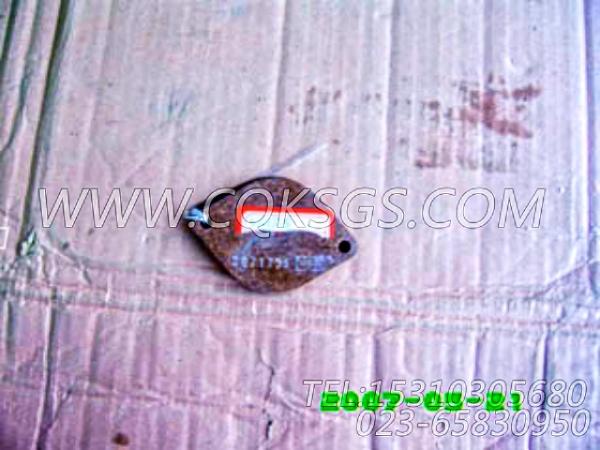 3021735衬垫,用于康明斯KTA19-P425主机飞轮壳组,【泥浆泵】配件-1