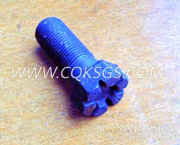204165螺栓,用于康明斯NTA855-P360发动机飞轮组,【水泵机组】配件-2