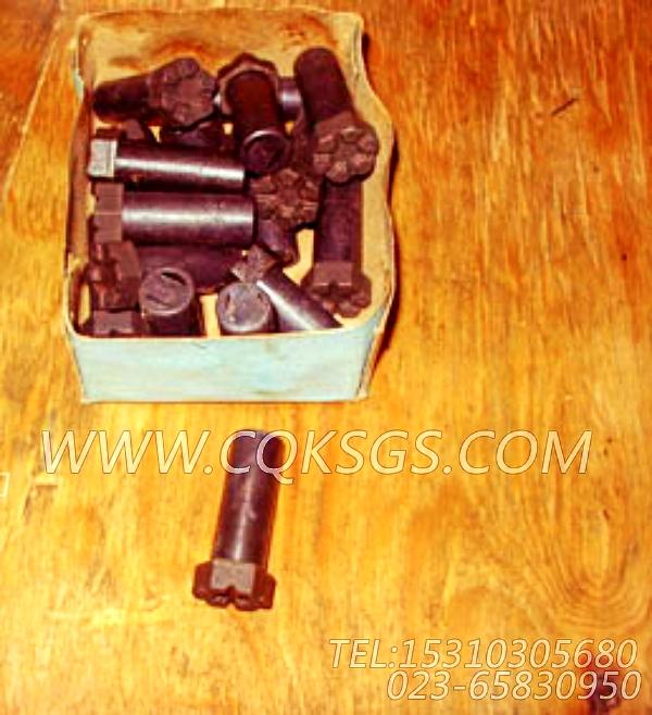 204165螺栓,用于康明斯NTA855-P360发动机飞轮组,【水泵机组】配件-0