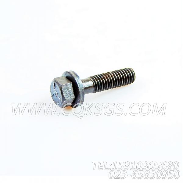 3033038带垫螺栓,用于康明斯KTA19-G3主机机油冷却器组,【发电用】配件-1