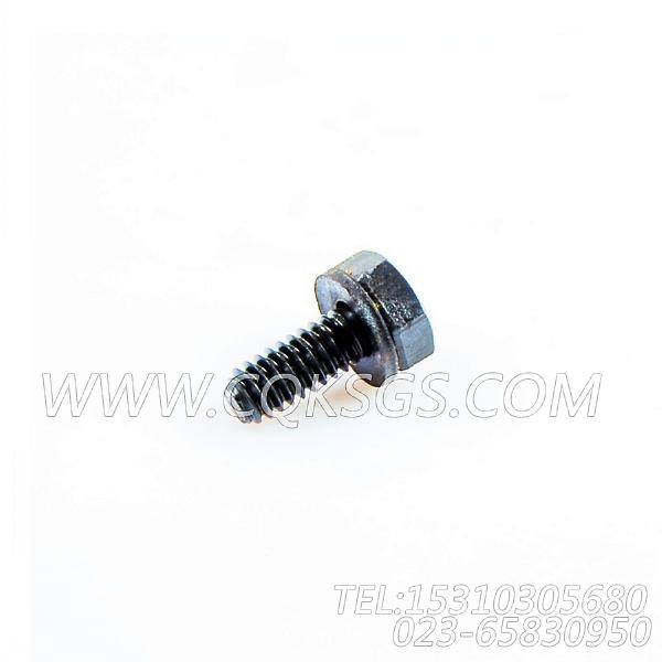 3033378带垫螺栓,用于康明斯KTTA19-G2主机水箱组,【动力电】配件-0