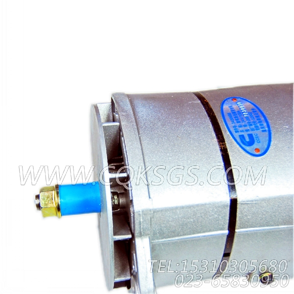 【充电机】康明斯CUMMINS柴油机的3400698 充电机-0
