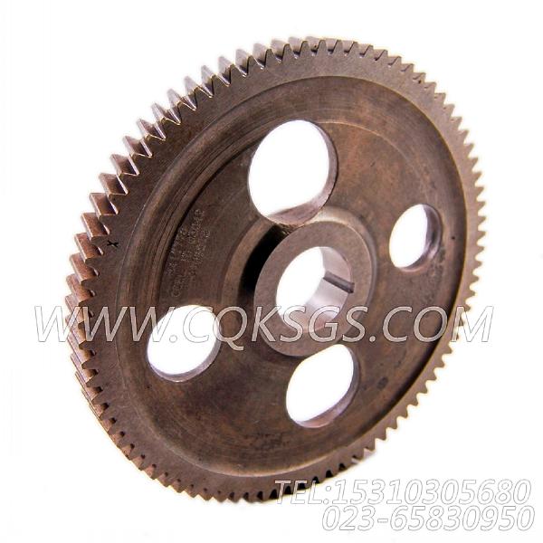 3417775凸轮轴齿轮,用于康明斯M11-C300柴油机性能件组,【扫雪车】配件-1