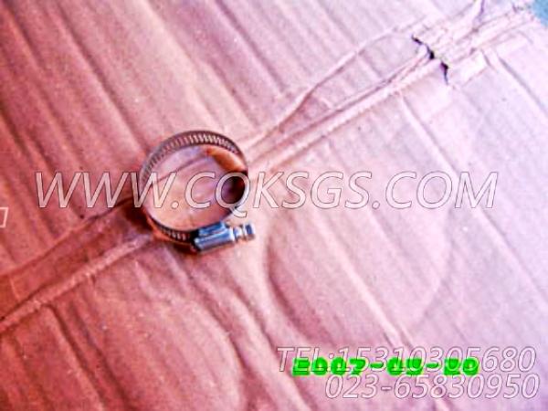 43828B软管夹箍,用于康明斯NT855-L290主机节温器壳组,【车用】配件-1