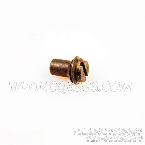69736锁紧螺栓,用于康明斯NT855-P250发动机基础件(船检)组,【水泵机组】配件-2
