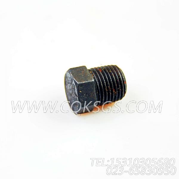 69901管塞,用于康明斯NTCR-290柴油发动机防护盖组,【德工冷再生机】配件-1