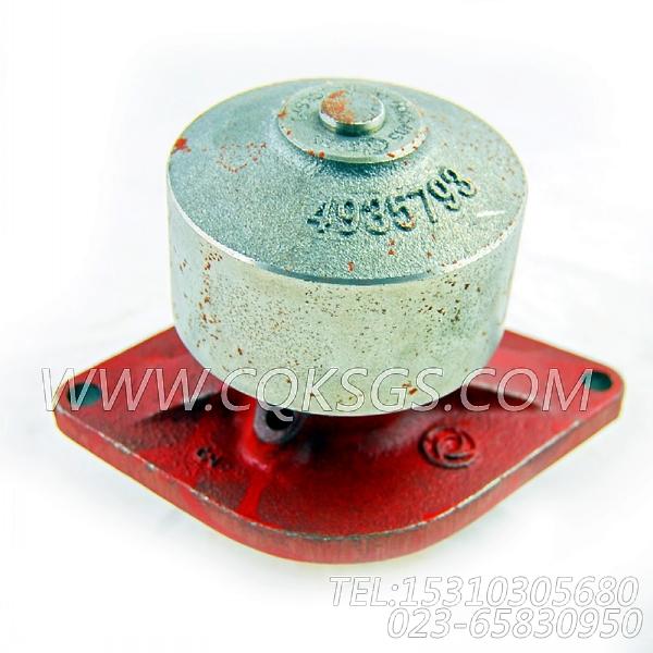 【柴油机C260 20的水泵组】 康明斯水泵,参数及图片-2