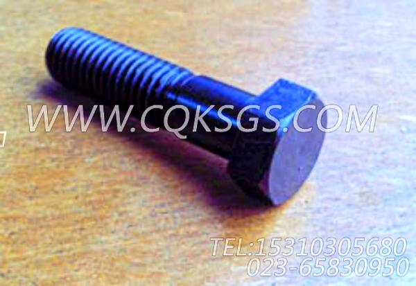 S125六角螺栓,用于康明斯KTA38-G2-660KW主机基础件组,【发电用】配件-0