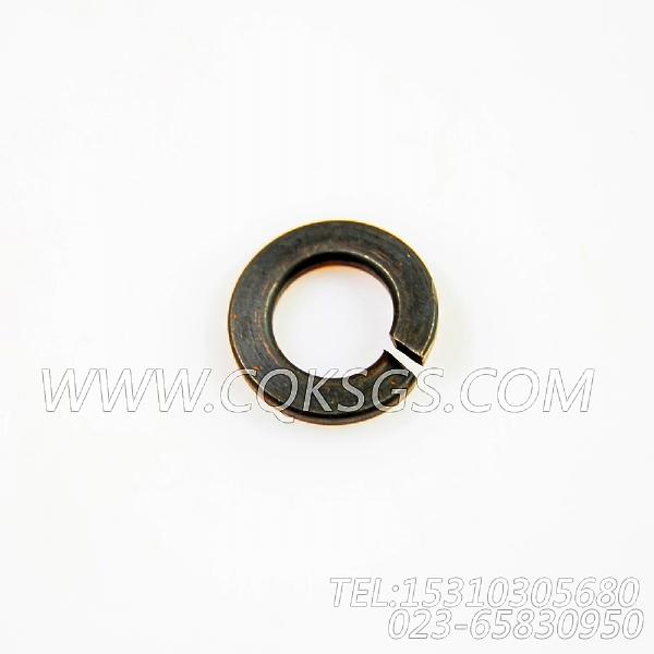 S605弹簧垫圈,用于康明斯NTA855-C360主机机油盘组,【通联重工矿用自卸车】配件-0