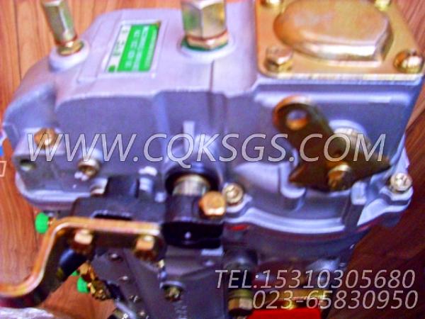 【喷油泵】康明斯CUMMINS柴油机的4946525 喷油泵-2