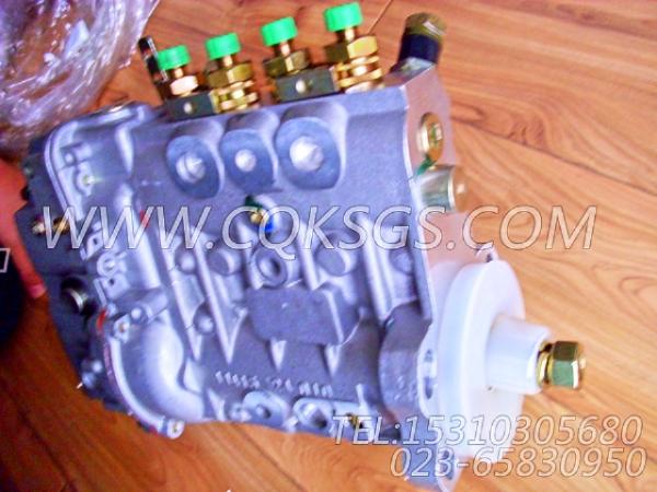 【喷油泵】康明斯CUMMINS柴油机的4946525 喷油泵-0