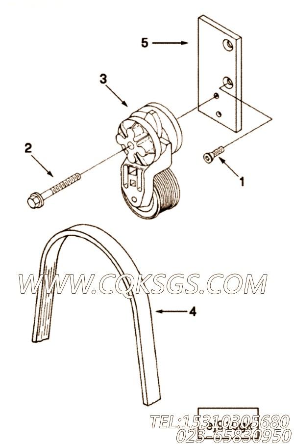 【发动机B5.9-195G的发电机驱动件组】 康明斯皮带张紧轮支架,参数及图片