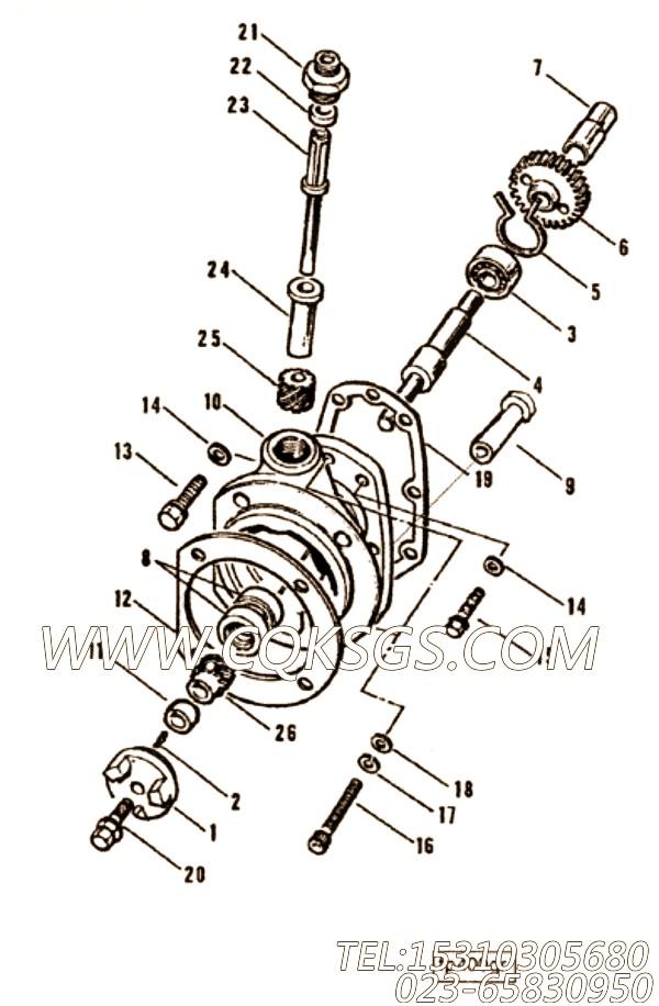 Gasket, Fuel Pump