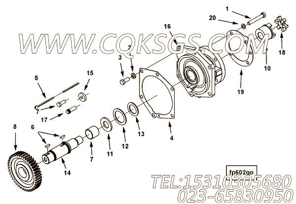 3175027平垫圈,用于康明斯KT38-G主机燃油泵支架组,【柴油发电】配件