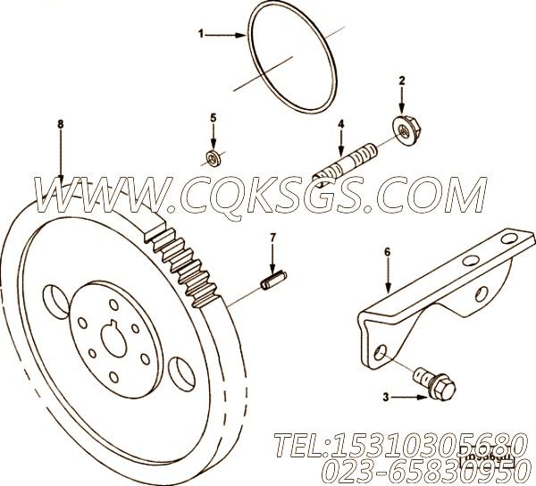 【燃油泵齿轮】康明斯CUMMINS柴油机的3950112 燃油泵齿轮