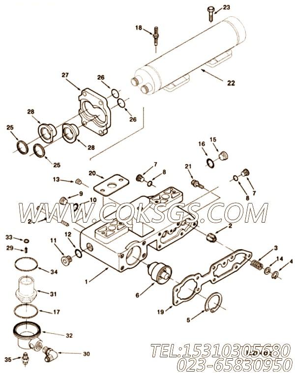3049010阳性弯接头,用于康明斯M11-C295柴油发动机机油冷却器组,【油田压裂车】配件