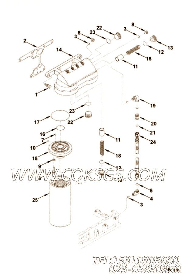 【外螺纹弯头】康明斯CUMMINS柴油机的3086052 外螺纹弯头