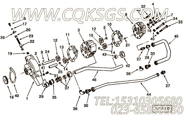 【滑泵】康明斯CUMMINS柴油机的3007579 滑泵