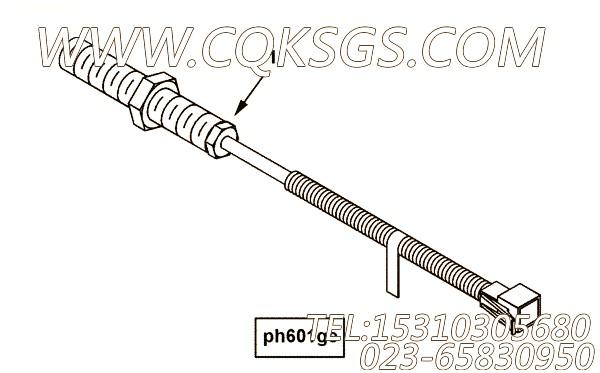 供应用于进口qsk45发动机speed sensor