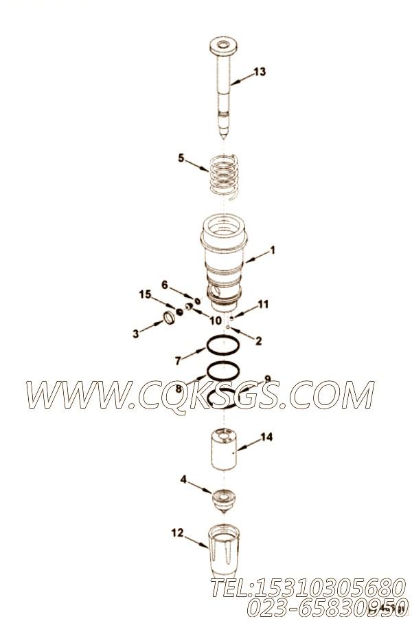 【喷油器柱塞】康明斯CUMMINS柴油机的205466 喷油器柱塞