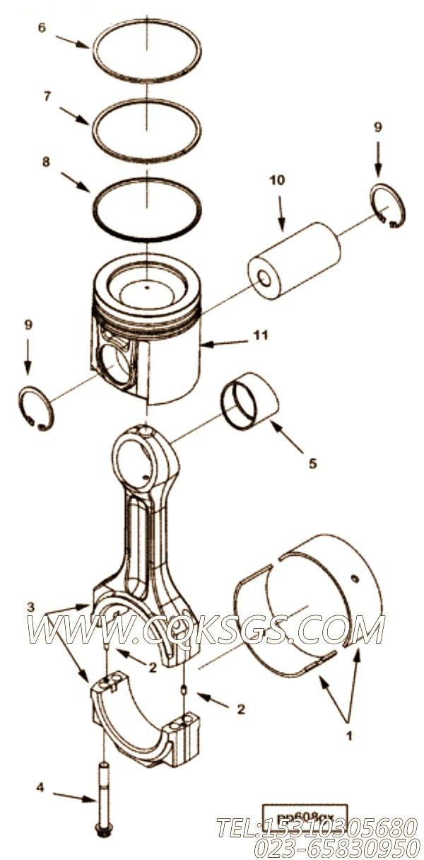 Ring, Oil Piston